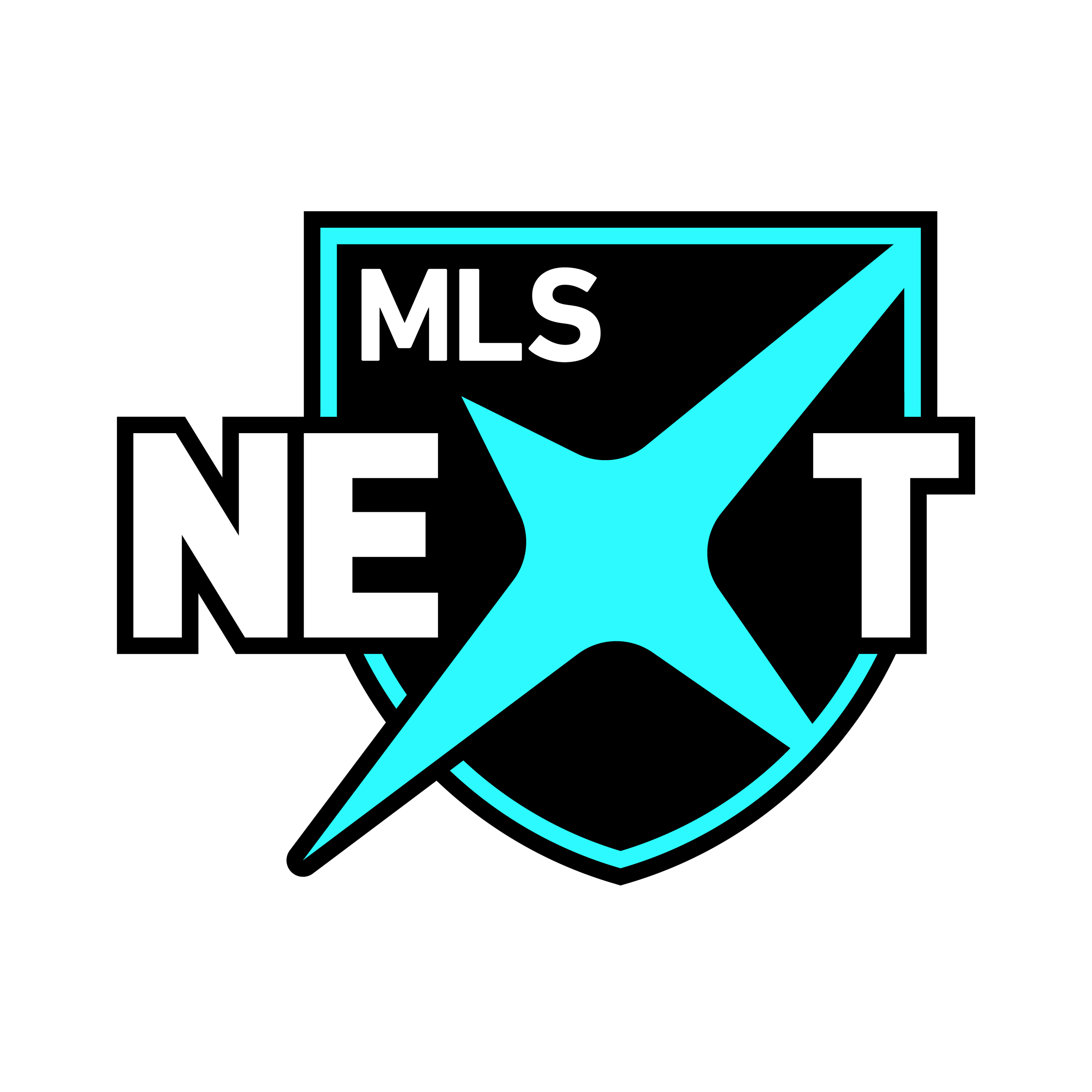 MLS Next Logo
